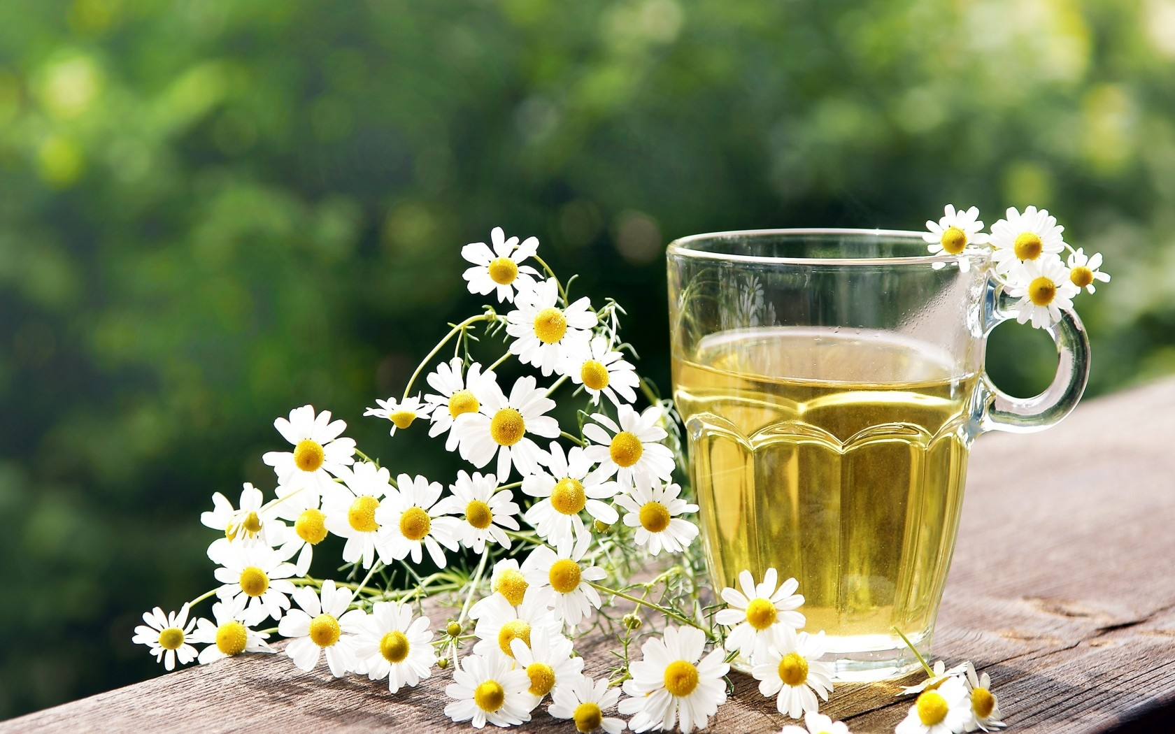 Chamomile Tea - National Flower of Russia