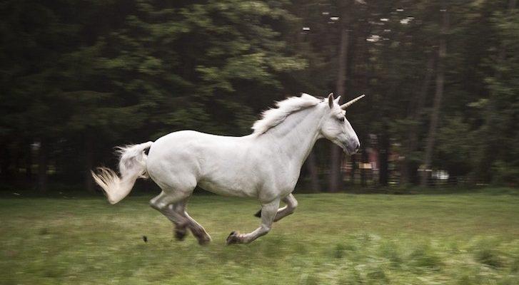 Unicorn - The National Animal of Scotland
