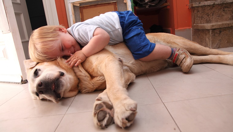 One and a half years old baby embraces a dog.