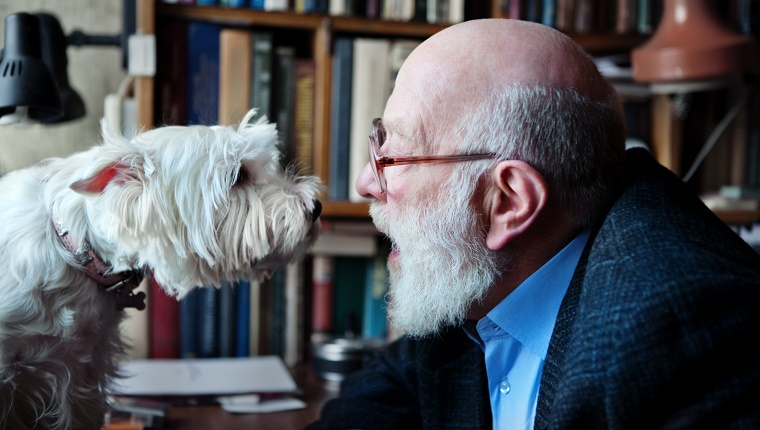Senior Adult Man With His Dog, heart-to-heart talk.