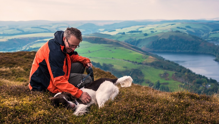 Man and his dog enjoying a rest after climbing a mountain in Wales, with a dramatic view overlooking Llyn Clewedog Reservoir.