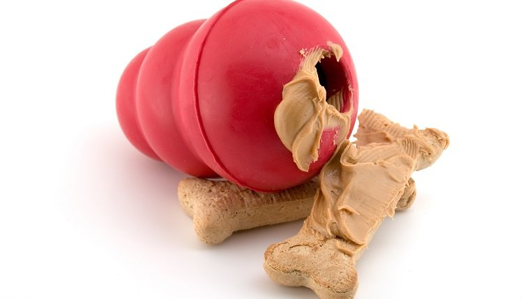 Red Rubber dog toy with peanut butter covered dog bones isolated on white. Copy Space.