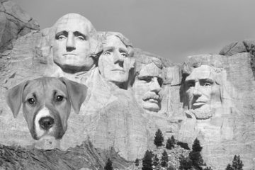 presidential-dog