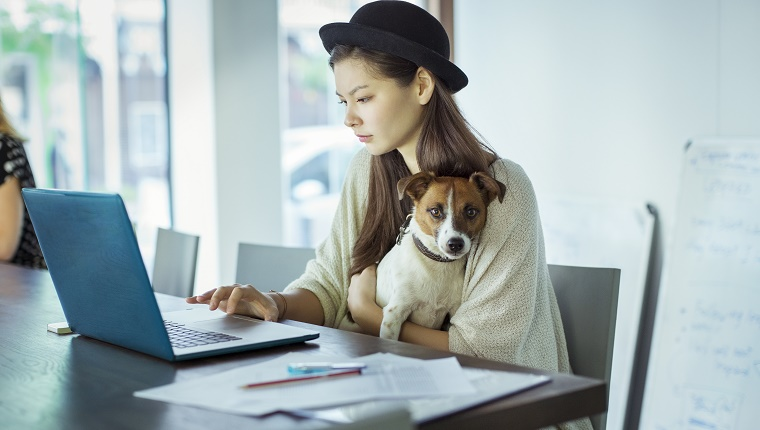 Woman holding dog and working in office