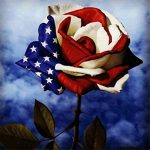 National Flower of America