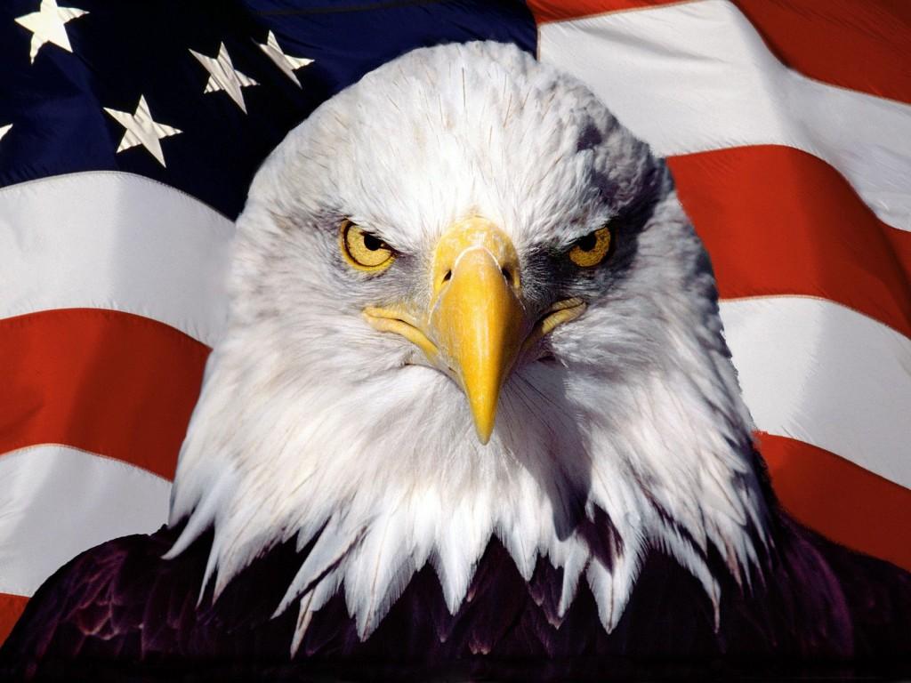 National animal of United States