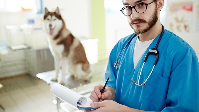 Healthcare worker making notes and looking at camera with dog on background