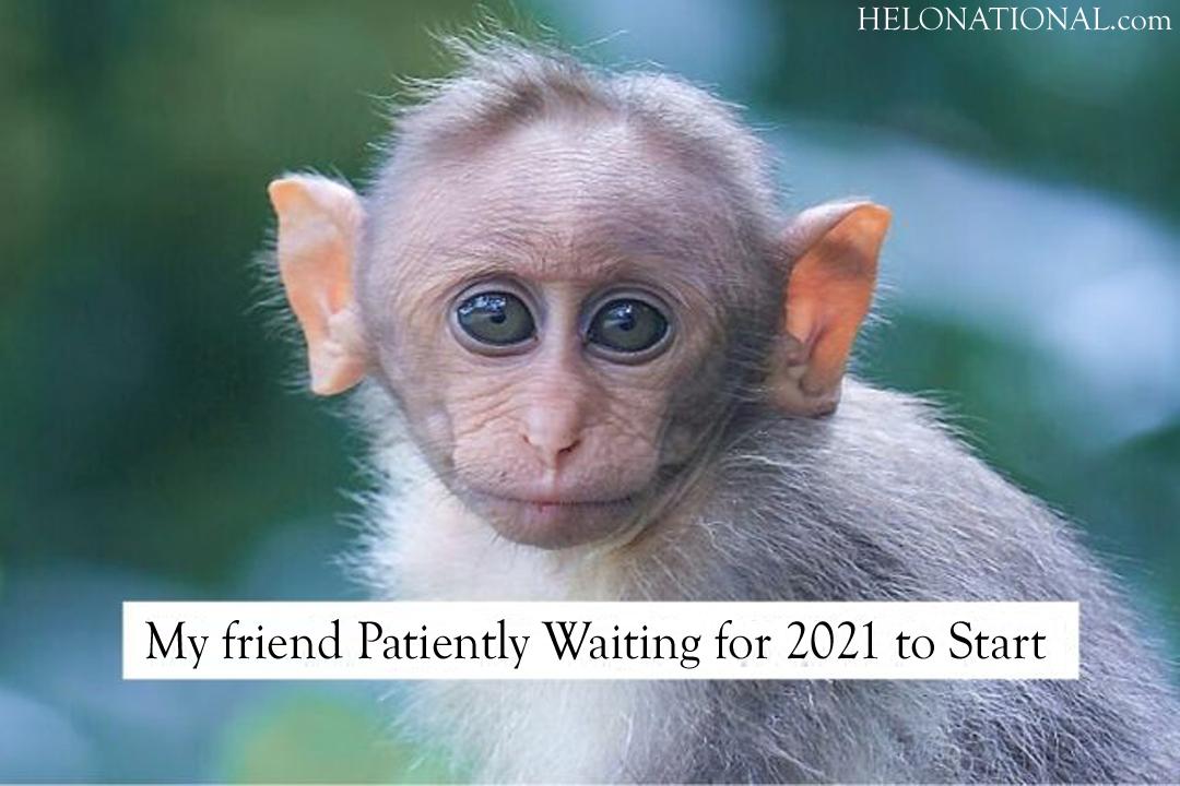 HNY 2021 Meme