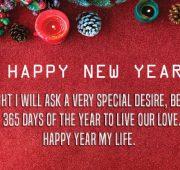 Happy new year 2020 wishes for husband, him, boyfriend