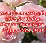 Happy new year wishes in zulu