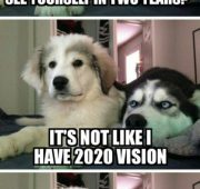 New year dog jokes