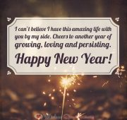 New year wishes quotes for lover