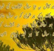 New year wishes urdu shayari